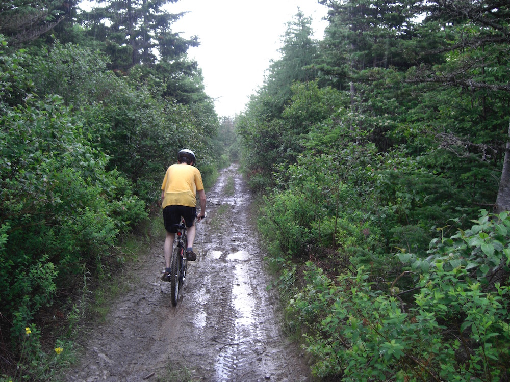 Peter riding on the old railway lines. These paths seemed so much bigger when we were children...