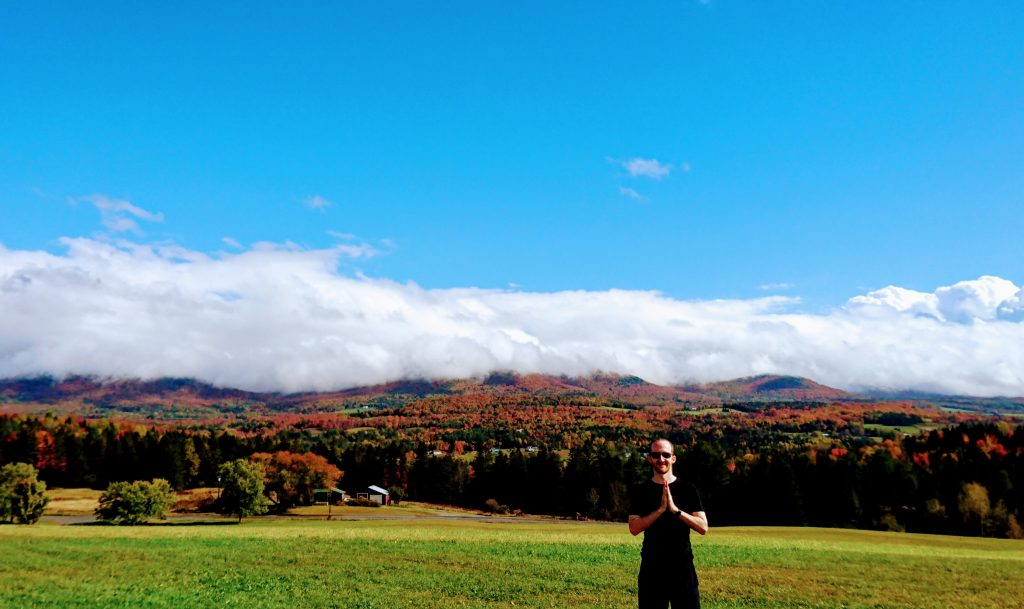 Angus on hilltop in vermont